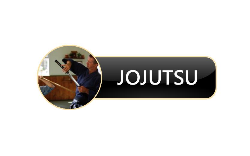 JOJUTSUBUTTON